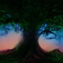 Under The Dreaming Tree